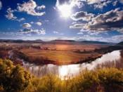 Viña Lanciano, de Bodegas LAN, en un meandro del rio Ebro
