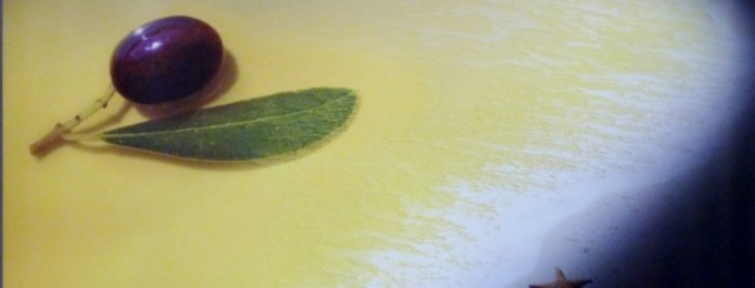 II Salon OliPremium 2014 de aceite de oliva virgen extra