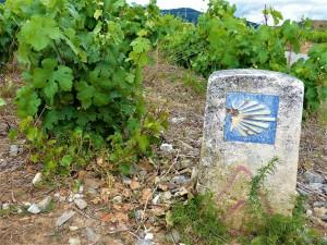Simbolo de el Camino de Santiago en pleno Bierzo