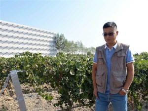 Leo Liu, jefe de viticultura de Chandon